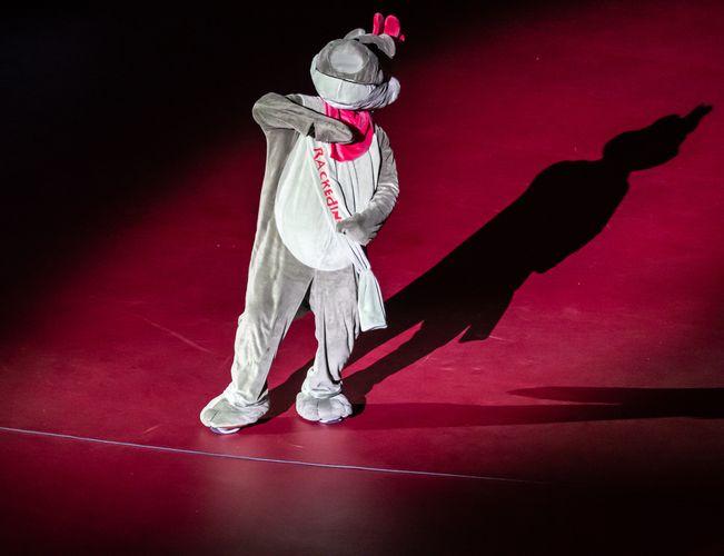 Über 15.000 Zuschauer strömten über die sechs Turniertage in die Bremer ÖVB-Arena. Das Maskottchen